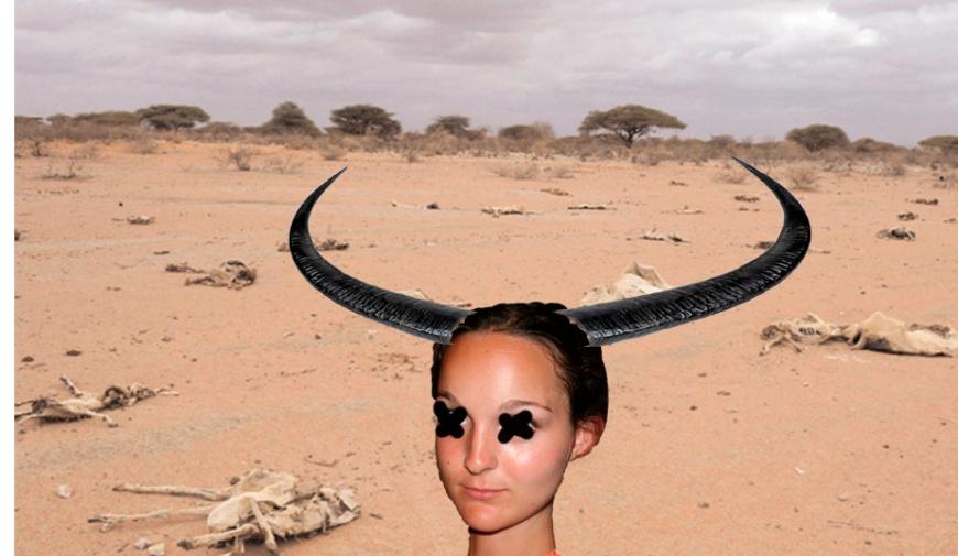desert mort